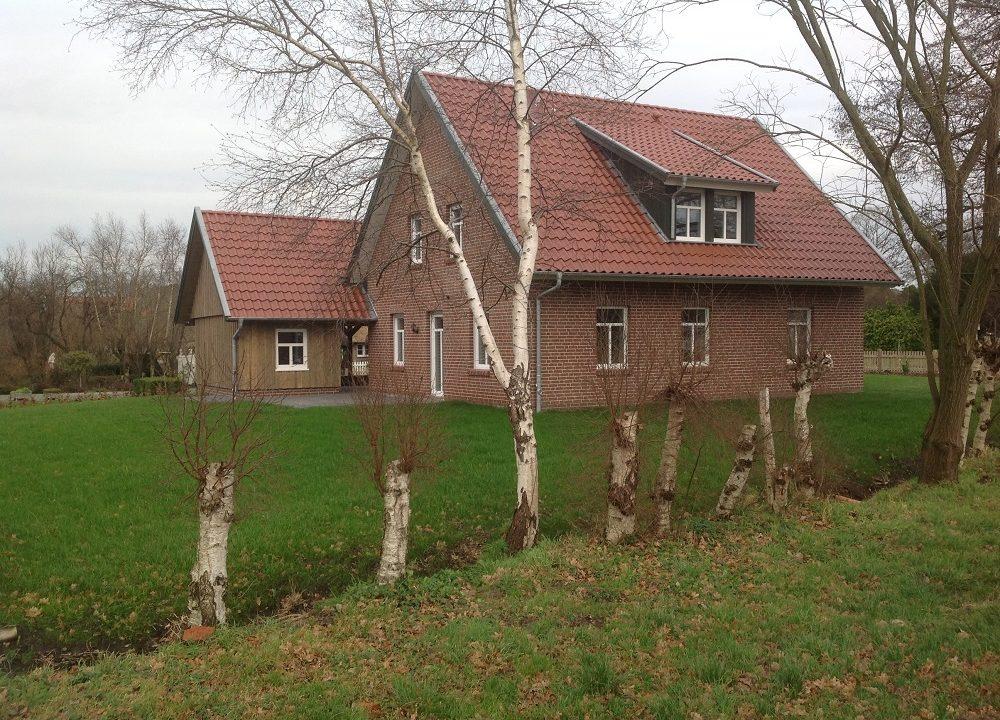 Haus mit Garten und Birken im Vordergrund